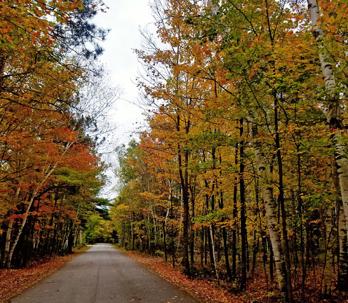 Fall Colors and Autumn Foliage at Door County Hotel and Resort