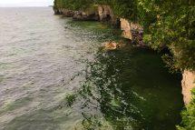 Niagra Escarpment and Cave Point Shoreline Bluffs Near Door County Hotel and Resort Glidden Lodge